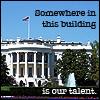 Missing talent, Talent
