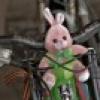 заяц на руле