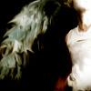 Wings of Supernatural