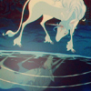 last unicorn: reflection