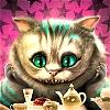 kamishasama: cat