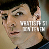 Pet: STR Spock I Don't Even