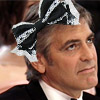 Clooney_Bow