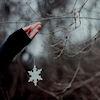 snowylynx userpic