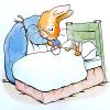 Evil Plotbunny: bed