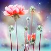 i_x_myheart: Pretty*
