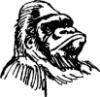 primat_dozent userpic