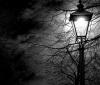 Comforting Darkness