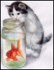 Котик - рыболов