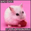 Emma: Raspberry