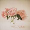 ribbonholic userpic