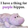 purple hippos