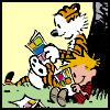 books - calvin & hobbes