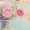 s! flowers