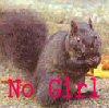 no_girl userpic