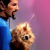 Puppycorn\nrocyppuP