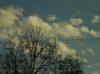 небо, весна, облака