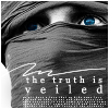 Viggo - the truth is veiled