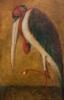 Leptoptilus aureovus