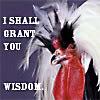Wisdom chicken