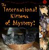 International Kittens of Mystery