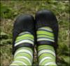 oak_in_spring userpic