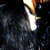 catacombkittenx userpic