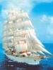 Белоснежный корабль