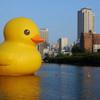 la Reina de la Torta: Giant Rubber Ducky of Happiness
