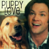 jessm78: Supernatural: Puppy Love Sam (5x16)