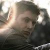 paloma1182: Jensen sunburst