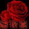 name - rose dark