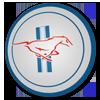 mustangua userpic