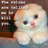 meredith44: Kitten voices by agilebrit