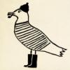 утки-индоутки