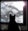 lavenderlithium userpic