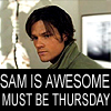 tinkabell007: Sam - awesome