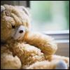 Teddy: Sleeping